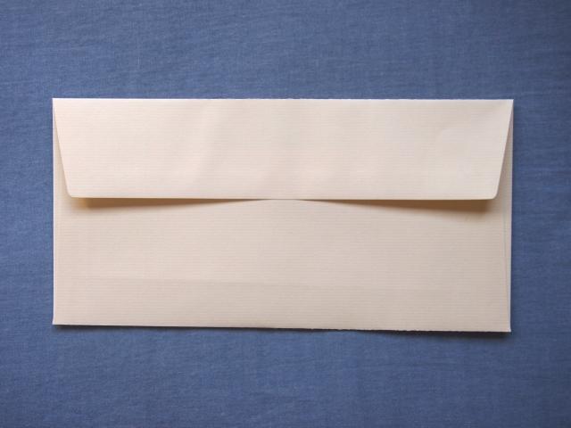 えらい膨らんだ封筒が到着