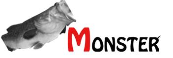 MONSTER【モンスター】